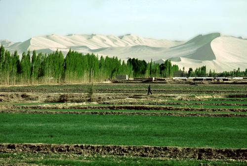 תמונה  2מדונחואנג