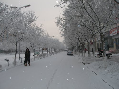 תמונה  3מג'יאיוגואן