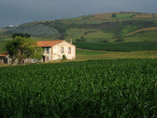 תמונה  3מקנטבריה
