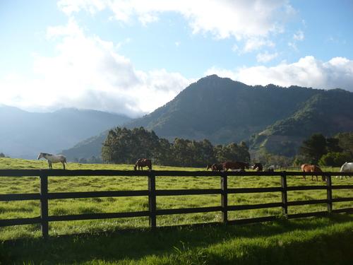 תמונה  0מפארק הר הגעש בארו