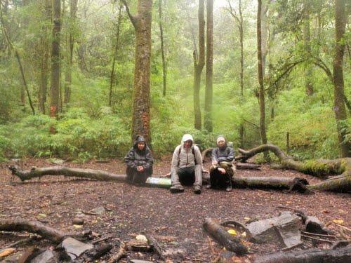 תמונה  1מפארק הר הגעש בארו