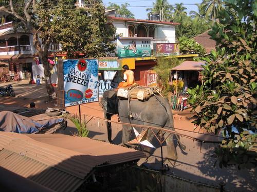 תמונה  2מחופים בדרום גואה