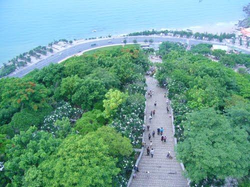 תמונה  2מוונג טאו