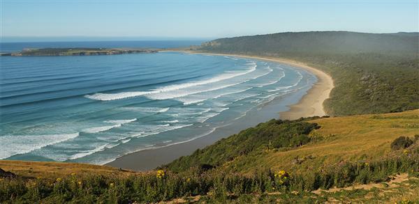הקטניס - דרום ניו זילנד