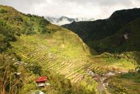 המסע אל טרסות האורז