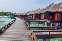 האיים המלדיביים - גן עדן