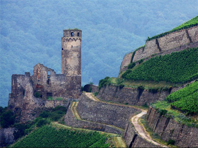 מידע למטייל בעמק הריין