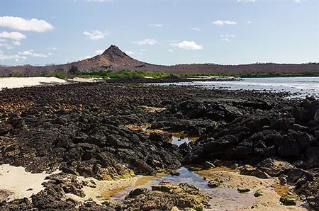 איי גלאפגוס