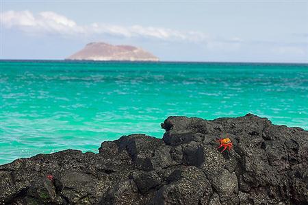 מידע למטייל באי סנטה קרוס