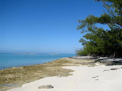 איי אבאקו