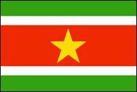 דגל סורינאם