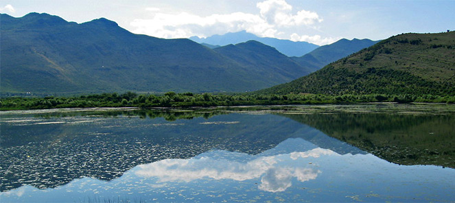 אלבניה