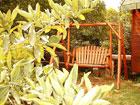 בקתות עץ השדה