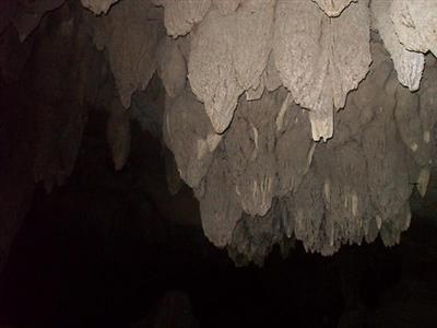מערות וואיפו