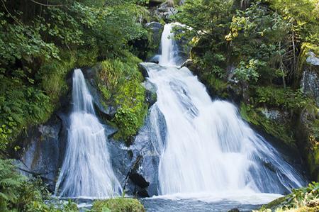 Triberg Waterfalls