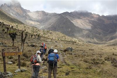 תמונה  0מפארק לאומי הר קניה