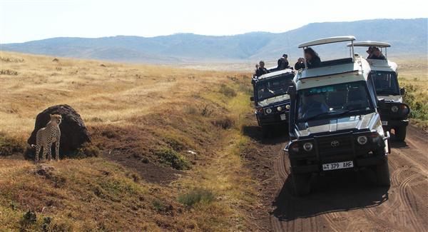 שמורת נגורונגורו בטנזניה