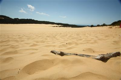 מידע למטייל בחוף הקשת