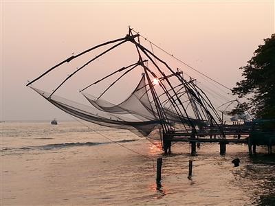 דרום הודו - Kerala 2015