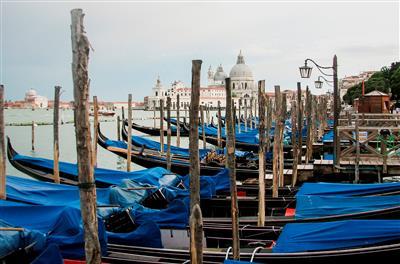 ונציה 2009