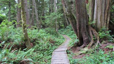תמונה  1מפארק הלאומי הרי הרוקי