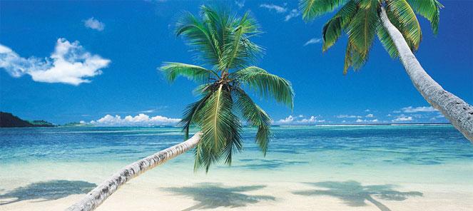 האיים הקאריביים